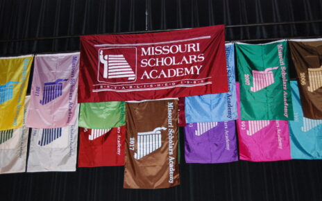2017 MSA Flags