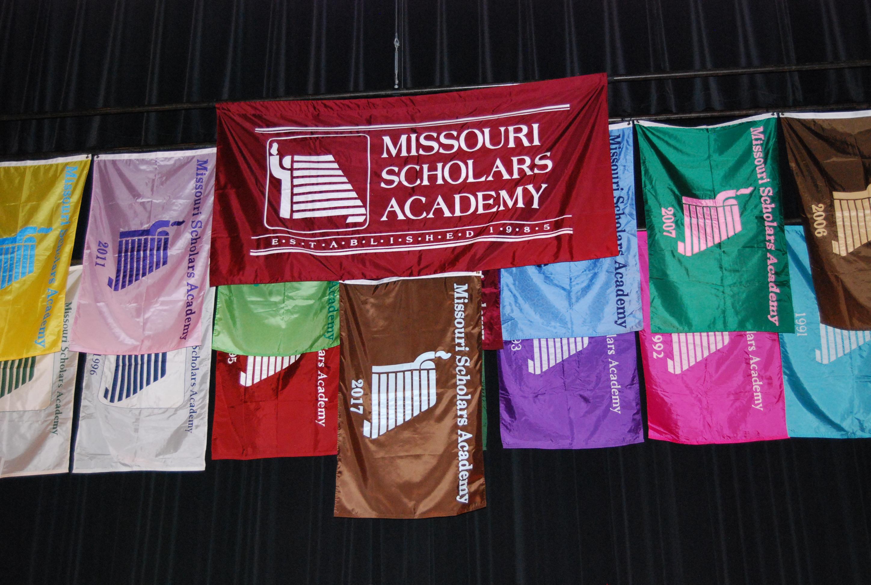 2017 MSA Flags
